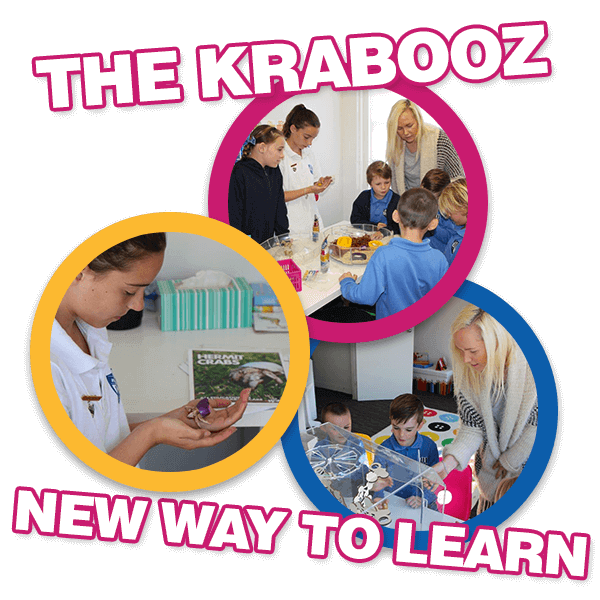 The Krabooz - New way to learn